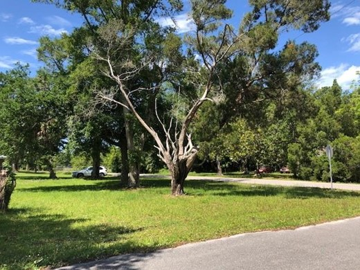 Listing #307750 located in Apalachicola, FL