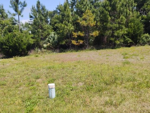 Listing #307711 located in Carrabelle, FL