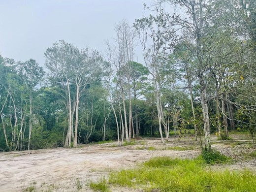 Listing #308646 located in Apalachicola, FL