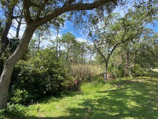 Listing #309138 located in St. George Island, FL