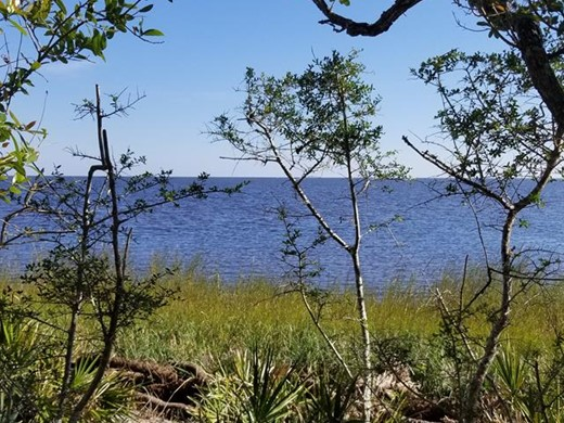 Listing #309304 located in Carrabelle, FL